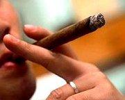 Cuban Havana Cigars (?????�???????????� ???????�???�)